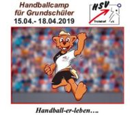 Handballcamp HSV